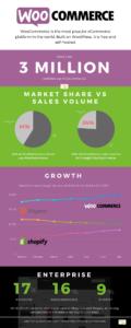 WooCommerce Statistics Infographic