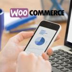 WooCommerce Statistics [Infographic]